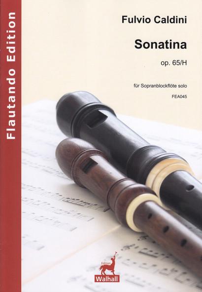 Caldini, Fulvio (*1959):Sonatina op. 65/H