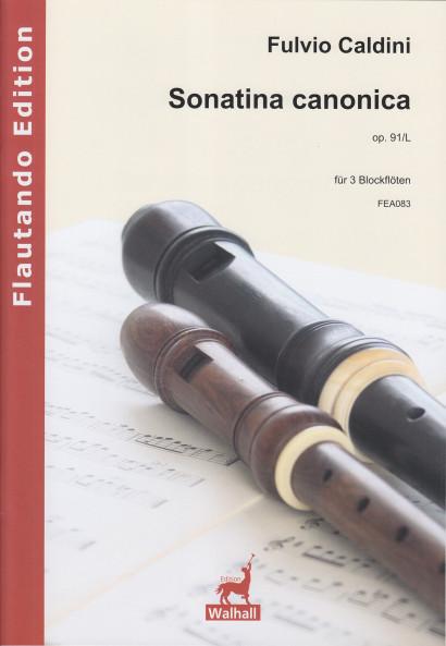 Caldini, Fulvio (*1959): Sonatina canonica op. 91/L