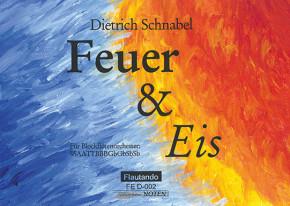 Schnabel, Dietrich (*1968): Feuer und Eis